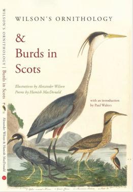 wilsons+burds+in+scots